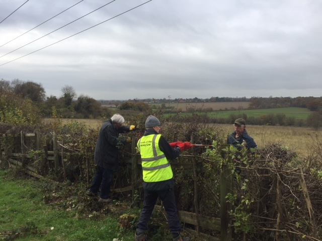 Cutting back hedges near Knott Wood